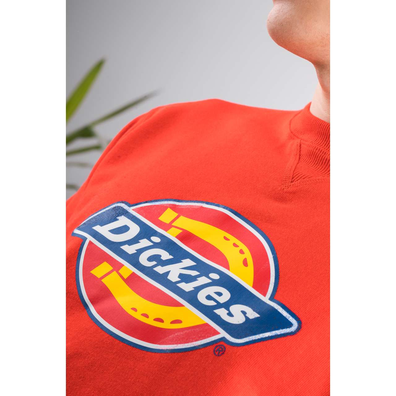 Bluza Dickies  <br/><small>HARRISON FIERY RED </small>  2200072