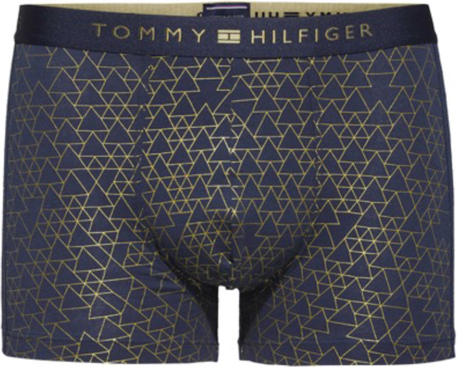 Tommy Hilfiger TRUNK TRIANGLE GEO 706 UM0UM00402-706