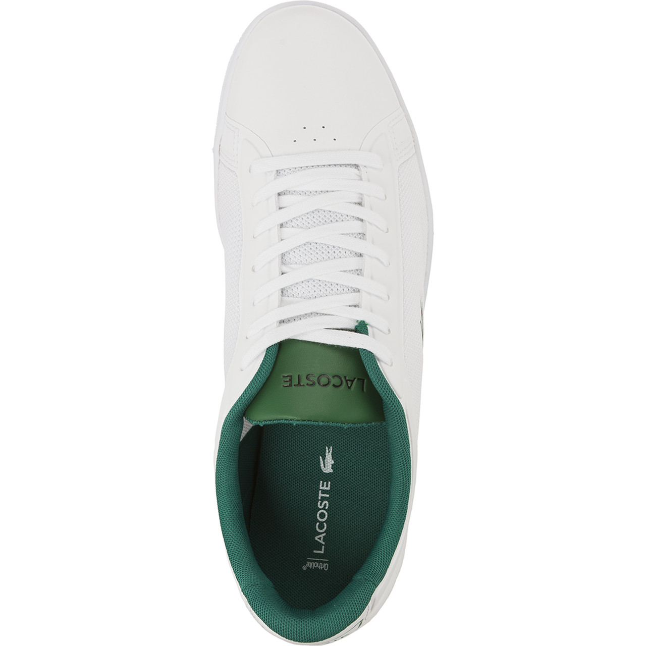 Buty Lacoste  <br/><small>ENDLINER 117 1 082 </small>  733SPM1005082