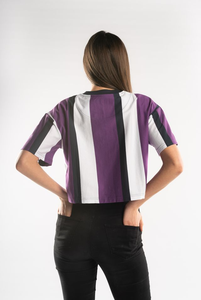 Koszulka Karl Kani  <br/><small>STRIPE TEE 270 WHITE/PURPLE/BLUE </small>  6139270