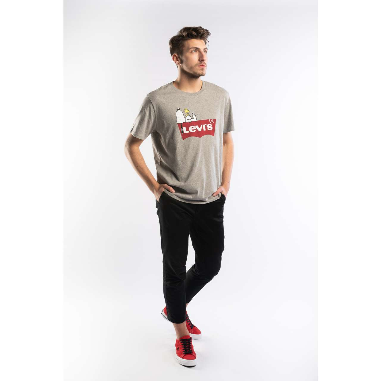 Koszulka Levi's  <br/><small>PEANUTS GRAPHIC TEE 0525 PEANUTS HEATHER GREY </small>  22491-0525